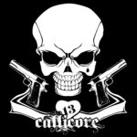 cropped-callicore02.jpg